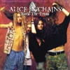 Bleed the Freak (Remastered) [Live At La Reina, Sheraton CA 15th Sep 1990], Alice In Chains