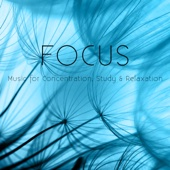 Focus: Music for Concentration, Study & Relaxation