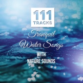 111 Tracks: Tranquil Water Songs with Nature Sounds: Healing Meditations, Music for Yoga, Reiki, Spa, Massage, New Age - Serenity Instrumental Music