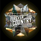 Artists Of Then, Now & Forever - Forever Country artwork