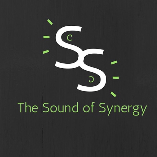 pros and cons of synergy