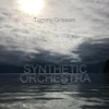 Synthetic Orchestra - Single