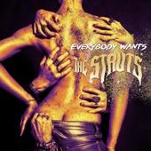 Everybody Wants