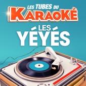[Download] La plus belle pour aller danser (Karaoké playback instrumental) [Rendu célèbre par Sylvie Vartan] MP3