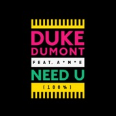Duke Dumont / Ame - Need You 100%