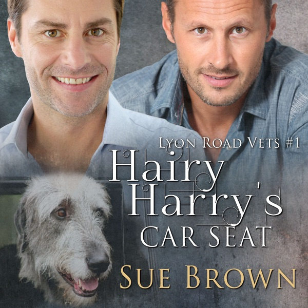 Lyon Road Vets 01 - Hairy Harry's Car Seat (M4B) - Sue Brown
