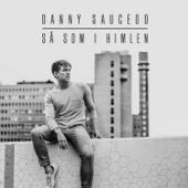 Danny Saucedo - Så som i himlen (feat. Tensta Gospel) bild