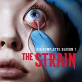 The Strain-Saison 1