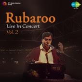 Rubaroo - Live in Concert, Vol. 2