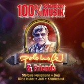 Polo Hofer - Polo Hofer & Friends - 100% Schweizer Musik (2015 Versionen) Grafik