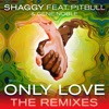 Only Love (feat. Pitbull & Gene Noble) [The Remixes] - Single, Shaggy