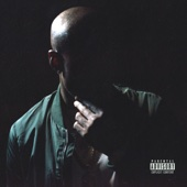 Freddie Gibbs - Shadow of a Doubt  artwork