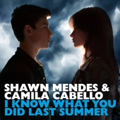 Shawn Mendes & Camila Cabello - I Know What You Did Last Summer artwork