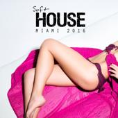 Soft House Miami 2016