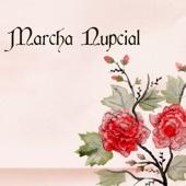Marcha Nupcial - Música Orquestal para Bodas y Canciones Románticas para Casarse