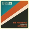 The Primitives Reworked By Modular (feat. Modular) - EP ジャケット写真