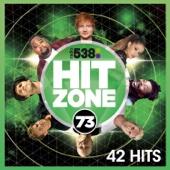 Verschillende artiesten - 538 Hitzone 73 kunstwerk