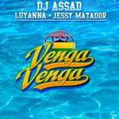 Venga Venga (feat. Luyanna & Jessy Matador) - Single