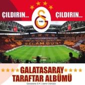 Çıldırın Çıldırın (Galatasaray Taraftar Albümü)