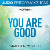 Israel & New Breed - You Are Good (Original Key With Background Vocals) artwork