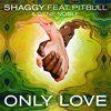 Only Love (feat. Pitbull & Gene Noble) - Single, Shaggy