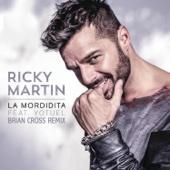 La Mordidita (Brian Cross Remix) [feat. Yotuel]