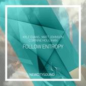Follow Entropy - Single