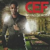 Cef - Pintor de Rua artwork