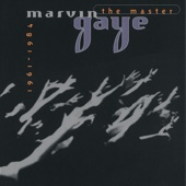 Marvin Gaye: The Master (1961-1984)