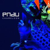 Chameleon [Free mp3 Download songs and listen music]