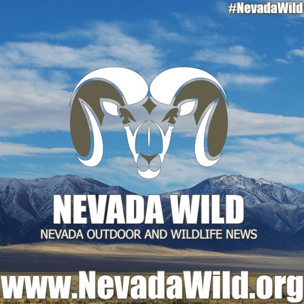 Nevada Wild