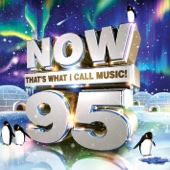 Various Artists - NOW That's What I Call Music! 95 artwork