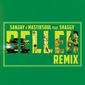 Belleh (Remix) [feat. Shaggy] - Single