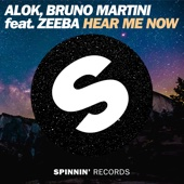 Alok & Bruno Martini - Hear Me Now (feat. Zeeba)  arte