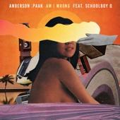 Am I Wrong (feat. ScHoolboy Q)