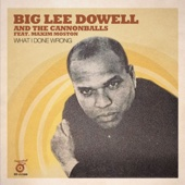 Big Lee Dowell & The Cannonballs - What I Done Wrong (feat. Maxim Moston) [Extended Version] Grafik