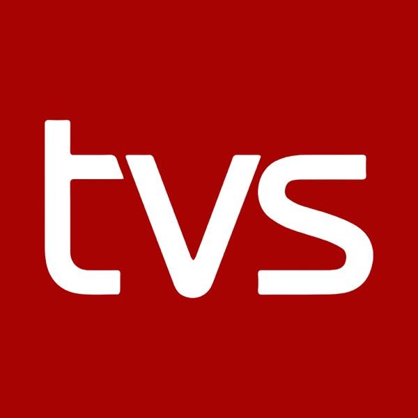 TV SYD - 19.30 nyhederne