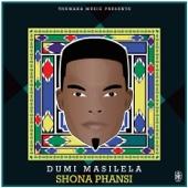 Dumi Masilela - Shona Phansi artwork