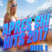 Various Artists - Apres Ski Hits 2017 (Deel 1) kunstwerk