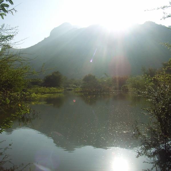 Guided meditations with Jaya Ashmore