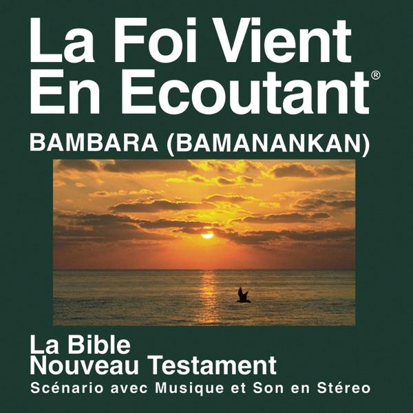 Bambara Bible