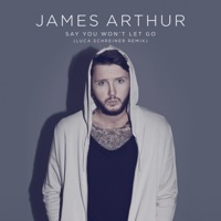 Say You Won't Let Go (Remix) - Single