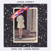 Miss You (HONNE Remix)