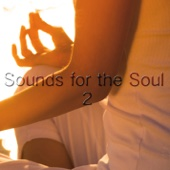 Sounds For the Soul 2