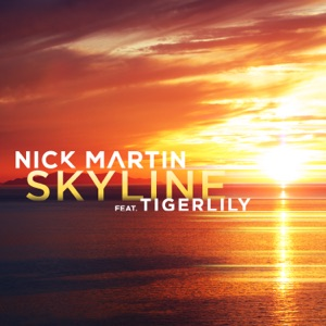 Nick Martin - Skyline Feat Tigerlily (Hook N Sling Remix)