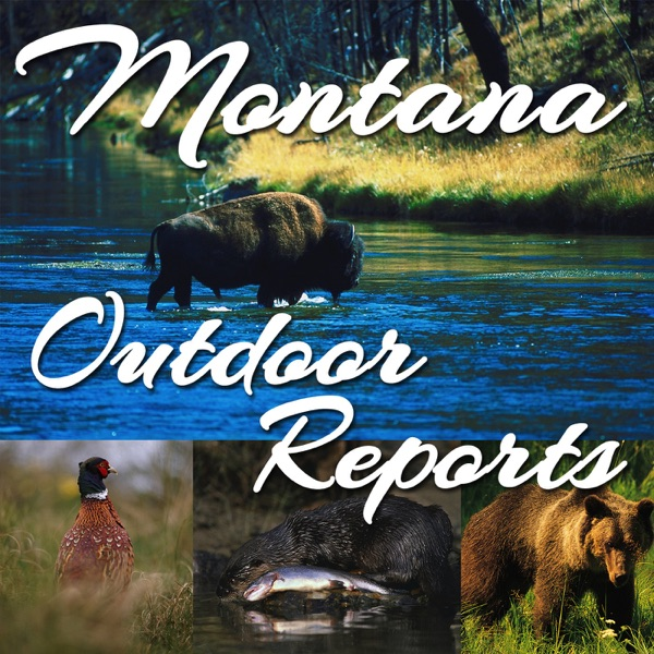 Montana FWP Outdoor Reports
