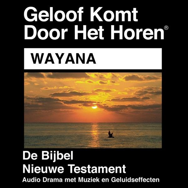 Wayana Bible - Wayana Bijbel
