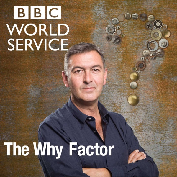 The Why Factor