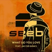 Download Lagu MP3 Seeb - What Do You Love (feat. Jacob Banks)
