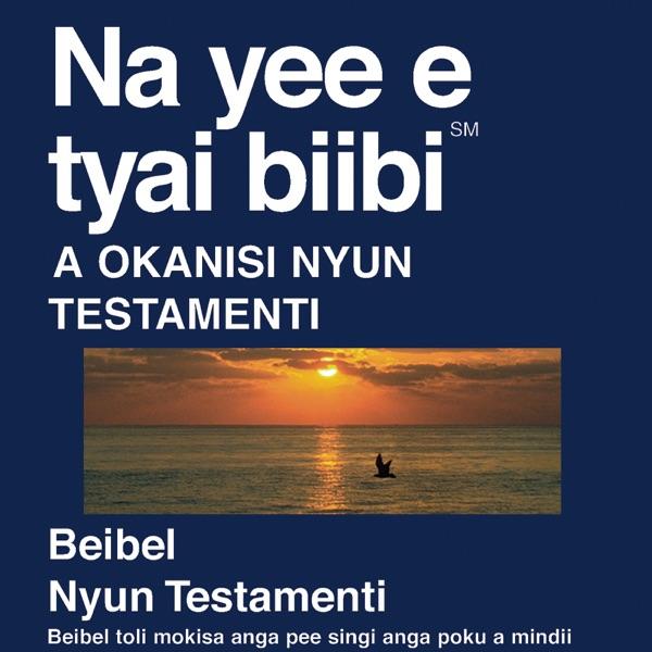 Aukaans Bijbel - Aukaans Bible